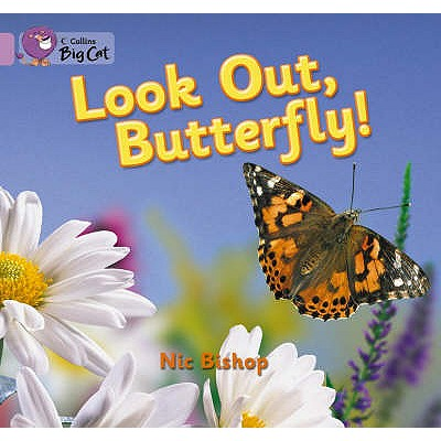 Image for Look Out Butterfly! (Collins Big Cat)