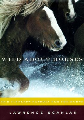 Image for Wild about horses