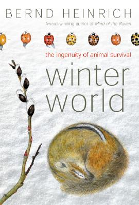 Image for WINTER WORLD : THE INGENUITY OF ANIMAL S