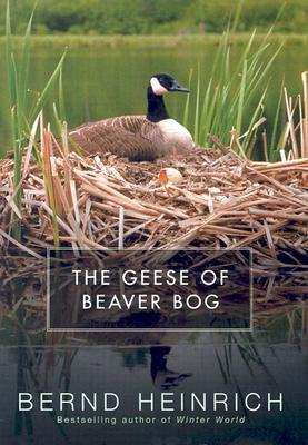Image for The Geese of Beaver Bog