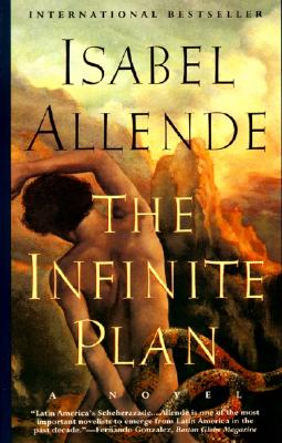 Image for The Infinite Plan: A Novel