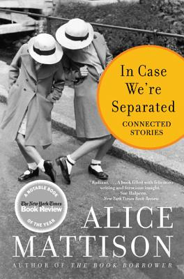 Image for In Case We're Separated: Connected Stories