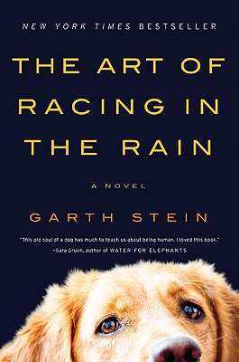 Image for The Art Of Racing In The Rain