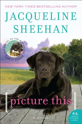 Picture This: A Novel, Jacqueline Sheehan