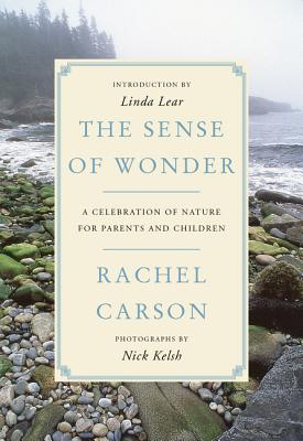 Image for The Sense of Wonder: A Celebration of Nature for Parents and Children