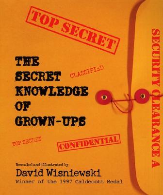 The Secret Knowledge of Grown-Ups, Wisniewski, David