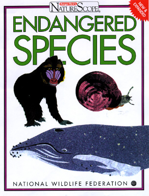 Image for Endangered Species: Wild and Rare