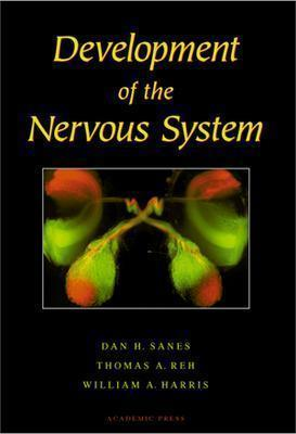 Image for Development of the Nervous System