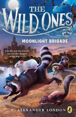 Image for The Wild Ones: Moonlight Brigade