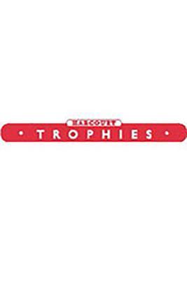 Image for Harcourt School Publishers Trophies: Se(Time Togethr)Level  1-4 Grade 1 2005 (Harcourt Trophies)