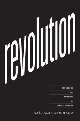 Image for Revolution: Structure and Meaning in World History
