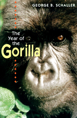 Image for Year of the Gorilla