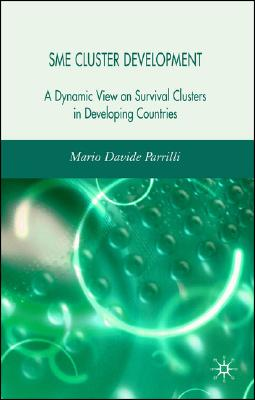 SME Cluster Development: A Dynamic View of Survival Clusters in Developing Countries, Parrilli, M.