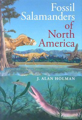 Fossil Salamanders of North America, Holman, J. A.