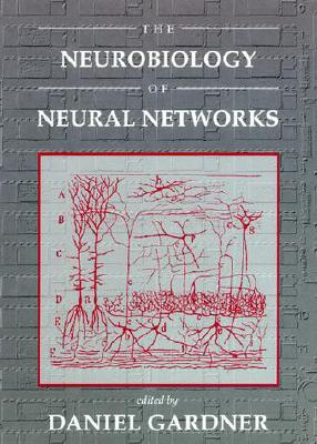 Image for Neurobiology of Neural Networks (Computational Neuroscience)