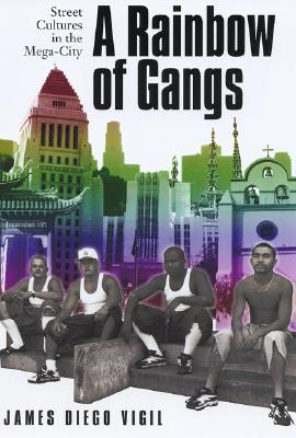 Image for RAINBOW OF GANGS, A STREET CULTURES IN THE MEGA-CITY