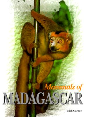 Image for Mammals of Madagascar