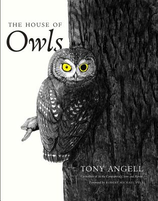 Image for The House of Owls