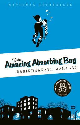 Image for The Amazing Absorbing Boy