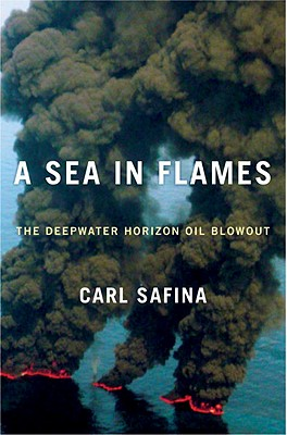 Image for A Sea in Flames: The Deepwater Horizon Oil Blowout