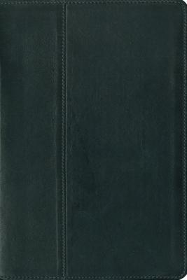 NIV Study Bible, Zondervan