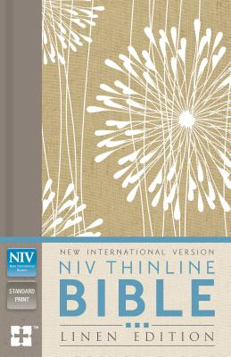 Image for NIV THINLINE HC ABSTRACT