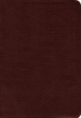 Image for Amplified Holy Bible, Bonded Leather, Burgundy: Captures the Full Meaning Behind the Original Greek and Hebrew