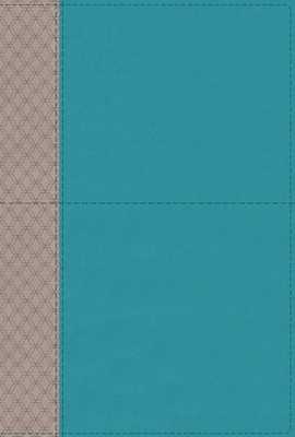Image for NIV Study Bible, Fully Revised Edition, Leathersoft, Teal/Gray, Red Letter, Thumb Indexed, Comfort Print