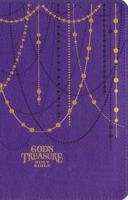 Image for NIV God's Treasure Holy Bible, Imitation Leather, Amethyst: Golden promises and priceless stories