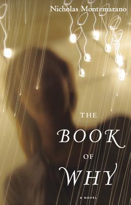 The Book of Why: A Novel, Montemarano, Nicholas