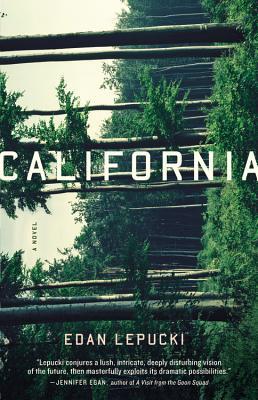 Image for California A Novel