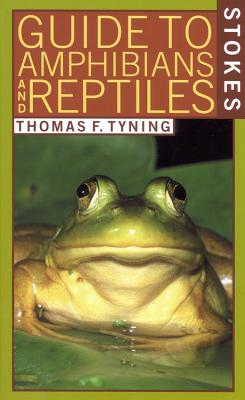 Image for A Guide to Amphibians and Reptiles (Stokes Nature Guides)