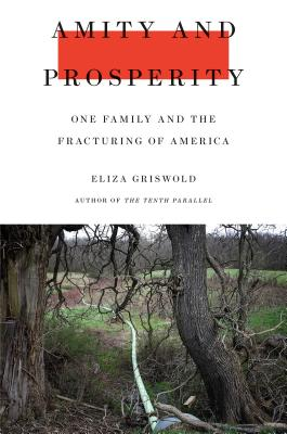 Image for Amity and Prosperity: One Family and the Fracturing of America