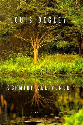 Image for Schmidt delivered