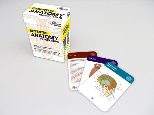 Essential Anatomy Flashcards (Graduate School Test Preparation), Princeton Review