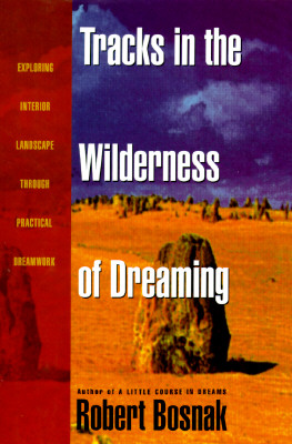 Image for Tracks in the Wilderness of Dreaming: Exploring Interior Landscape Through Practical Dreamwork