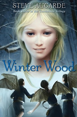 Image for Winter Wood: Book 3 in the Touchstone Trilogy