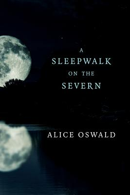 Image for A Sleepwalk on the Severn