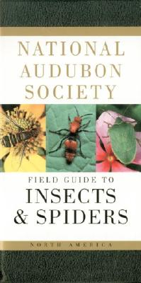 Image for National Audubon Society Field Guide to North American Insects and Spiders (National Audubon Society Field Guides)