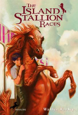 Image for The Island Stallion Races (Black Stallion)