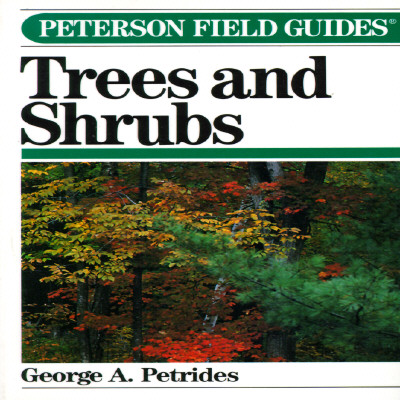 Image for Peterson Field Guide(R) to Trees and Shrubs (Peterson Field Guides)