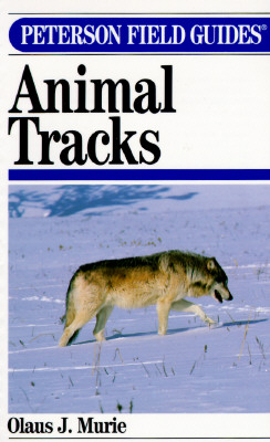 Image for Peterson Field Guide to Animal Tracks