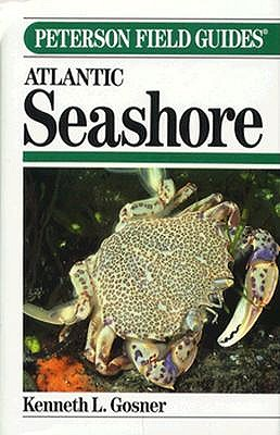 Image for A Field Guide to the Atlantic Seashore: Invertebrates and Seaweeds of the Atlantic Coast from the Bay of Fundy to Cape Hatteras