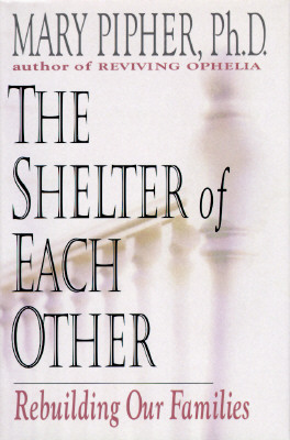 Image for The Shelter of Each Other: Rebuilding Our Families