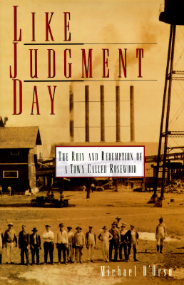 Image for Like Judgment Day (Ruin and Redemption of a Town Called Rosewood)