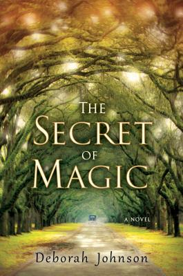 Image for SECRET OF MAGIC, THE A NOVEL