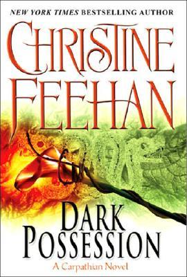 Image for Dark Possession Dark Series #18