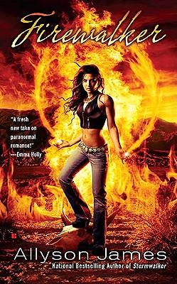 Firewalker (Stormwalker, Book 2), Allyson James