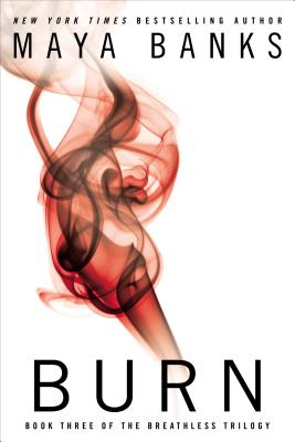 Image for BURN #3