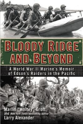 Image for Bloody Ridge And Beyond
